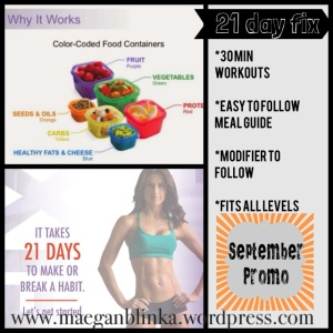 what is the 21-day fix, 21 day fix promotion, how does the 21-day fix work