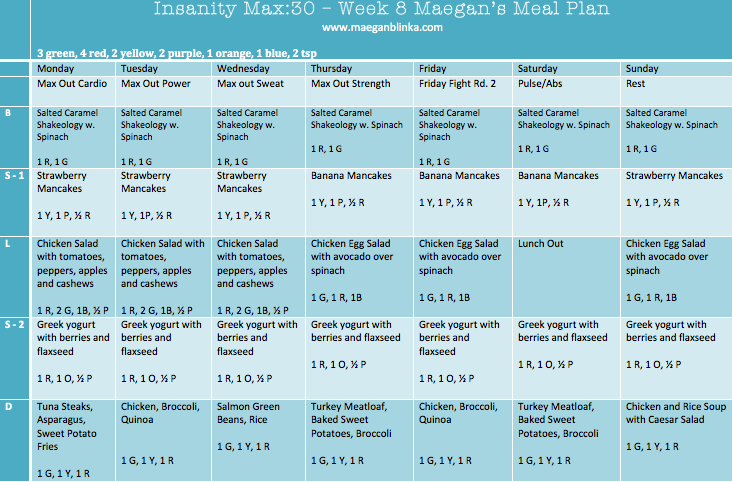 insanity max 30 pdf guide