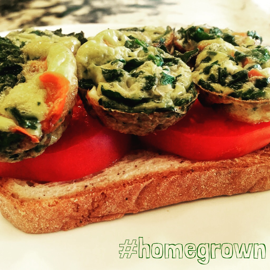 udis toast, Maegan Blinka, Megan Blinka, Veggie egg cups, vegetable egg cups, fast breakfast, easy breakfast, 21 day fix approved breakfast, homegrown tomatoes, organic eggs, easy lunch idea, 21 day fix approved, 21 day fix extreme approved, portion container meal plan,
