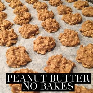 Peanut Butter cookie, easy cookie, cookies in under 20 minutes, fast cookie recipe, Peanut butter no bake, gluten free cookie, Maegan Blinka,  oatmeal cookie recipe