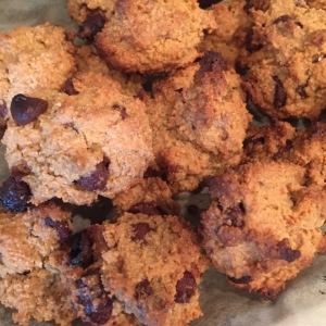 Maegan Blinka, Megan Blinka, FIXATE chocolate chip cookies, gluten free chocolate chip cookie, healthy chocolate chip cookie, Vegetarian cookies, healthier alternative, almond flour cookies, can you make your own almond flour, no sugar added cookies,