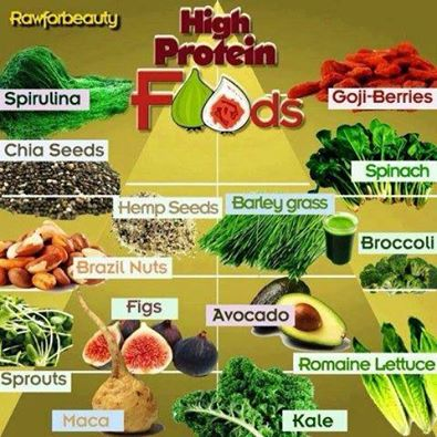 Day 20 Clean Eating-High Protein Foods