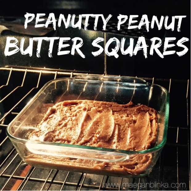 peanutty peanut butter squares.jpg